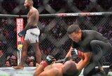 """""""UFC 226"""": nuviliantis F.Ngannou pasirodymas ir nokautas kikbokso legendai"""