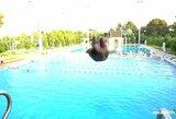 Žalgiriečiai Turkijoje išbandė jėgas šuoliuose į baseiną