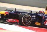 "M.Webberis liko nustebintas ""Red Bull"" bolido greičiu"