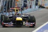 Pirmosiose Singapūro GP treniruotėse greičiausias buvo S.Vettelis