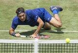 Po traumos sugrįžęs R.Federeris turėjo daug vargo su 18-mečiu R.Berankio skriaudiku