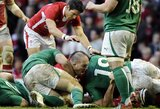 Šešių nacijų turnyrą griausmingai atidarė Velsas ir Airija