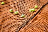 """Dvi Rusijos tenisininkės diskvalifikuotos """"iki gyvos galvos"""""""