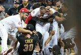 """Proga D.Neverauskui: po masinių muštynių """"Pirates"""" žaidėjams gresia diskvalifikacijos"""
