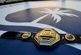 UFC narve – kova dėl pasaulio čempiono diržo