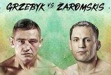MMA narve veteranas M.Žaromskis mes iššūkį pajėgiam lenkui