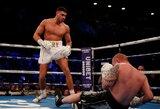 Po realybės šou sugrįžęs T.Fury brolis bokso ringe sutriuškino lenką per minutę