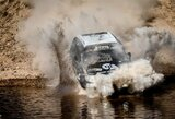 Ar Dakaro bolidai moka nardyti?