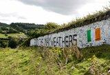 Airijos gatvių sienos išmargintos C.McGregorą garbinančiais ir F.Mayweatherį įžeidžiančiais piešiniais