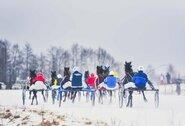 Atidedamos Sartų žirgų lenktynės