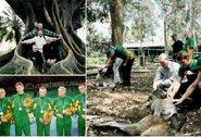 Golbolo sidabras Sidnėjuje: lietuvių eros pradžia, iš medžio iškrapštyta koala ir telefonai lauktuvėms