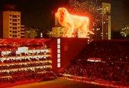 Pamatykite: holografinis liūtas ant stadiono nepaliko abejingų