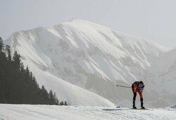 Pasaulio slidinėjimo čempionate M.Vaičiulis ir T.Strolia aplenkė 10 komandų