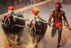 Greitesnis už U.Boltą? Indas užfiksavo įspūdingą rezultatą