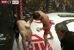 Revanšinėje kovoje V.Minejevas nokautavo visiškai be jėgų likusį vieną populiariausių Rusijos MMA kovotojų M.Ismailovą