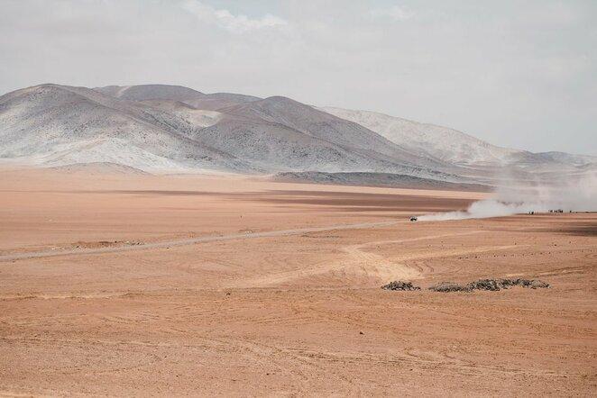 Dakaras | Ryčio Šeškaičio nuotr.