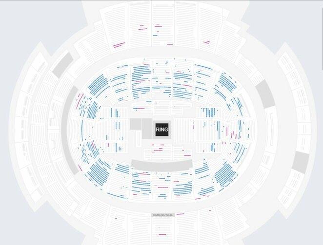 Mėlyna spalva pažymėtos laisvos vietos arenoje   Organizatorių nuotr.